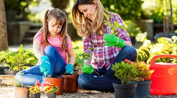 kit irrigazione a goccia per irrigazione fai da te